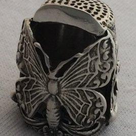 Robin Butterfly
